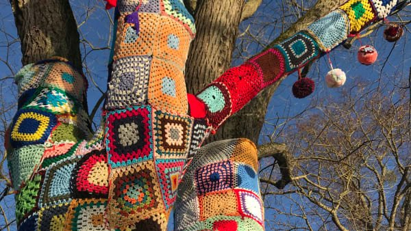Yarnbombed tree Stratford upon Avon